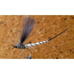 White Mayfly Dun