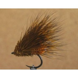 Sedge brownish